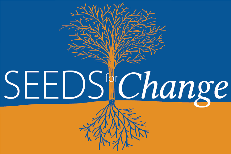 SEEDS4Change Logo